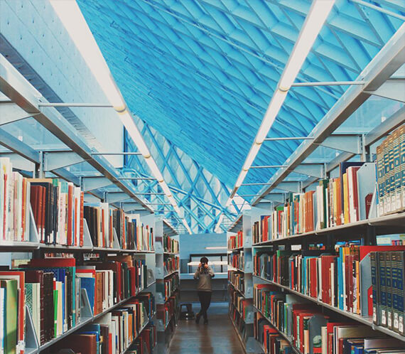 library - How to Make a Website